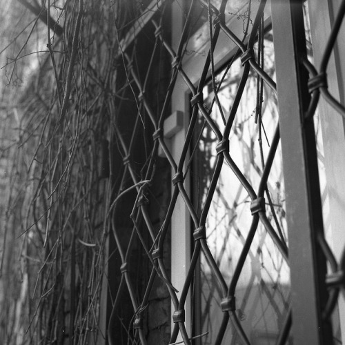 Fence on Flickr.