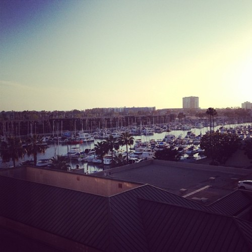 #marinadelrey #mdr #marina #ritzcarlton (at The Ritz-Carlton, Marina Del Rey)