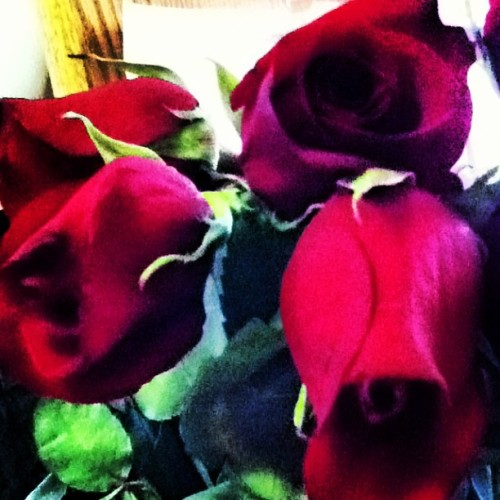 My first bouquet of roses 🌹💏💕 Thank you, @leemichael21. #latepost #promroses