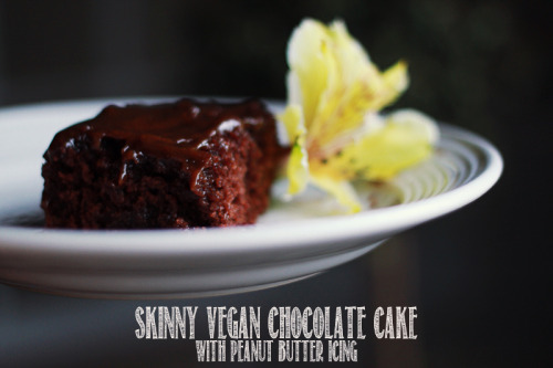 Skinnygirl vegan chocolate cake with peanut butter glaze.
