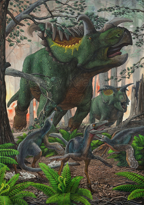 paleoillustration:  Kosmoceratops and Talos by Sergey Krasovskiy