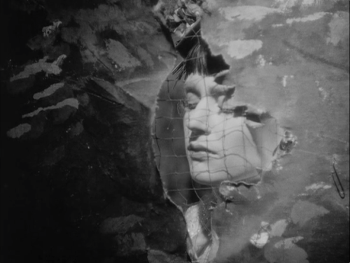 branduponthebrain:  Sawdust and Tinsel (Ingmar Bergman, 1953)