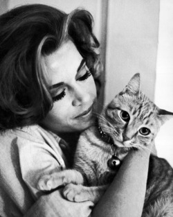 peoplewithcats:  Jane Fonda