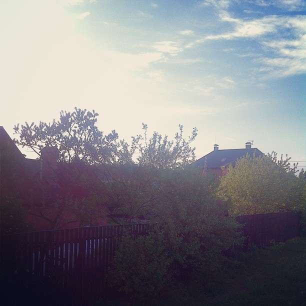 #home #sky #blue #trees