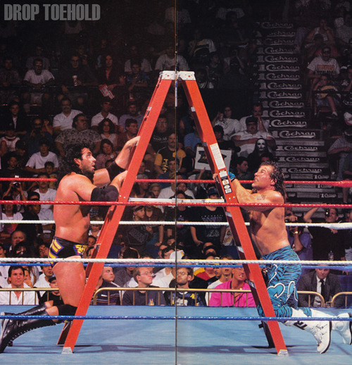 Razor Ramon and Shawn Michaels - WWF SummerSlam [8/27/1995] In a rare re-do of their classic WrestleMania match in 1994, Shawn Michaels and Razor Ramon fought again for the WWF Intercontinental Championship in a ladder match. The weird thing was that Michaels had built up a program against Sid for SummerSlam, but the match was canned at the last moment leading to this WrestleMania rematch. The match wasn't a classic by any means, but it was well appreciated, especially on a card where a Skip (Chris Candido) vs Barry Horowitz match is placed third on the bill.