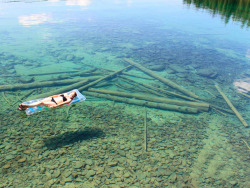 wheelhousemissoula:  The water is so clear on Flathead Lake that it looks amazingly shallow, even though in actuality it's 370 feet deep.