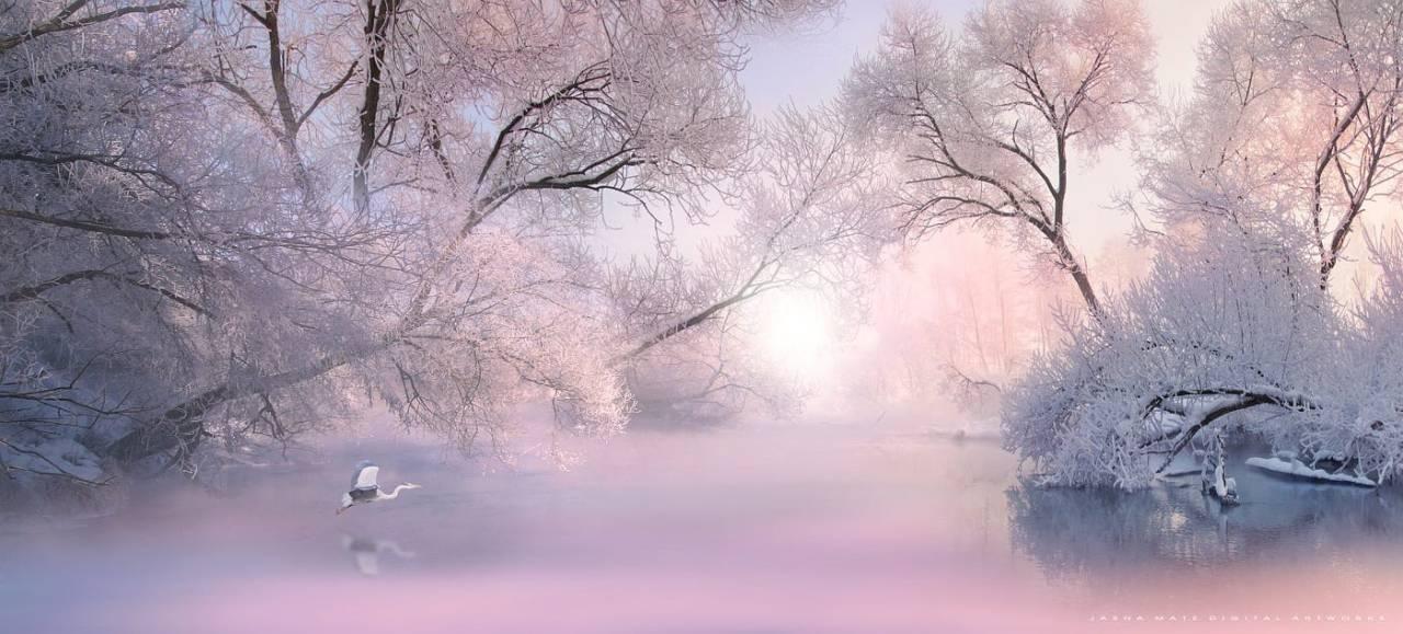 雪 - 空山鸟语 - 月滿江南