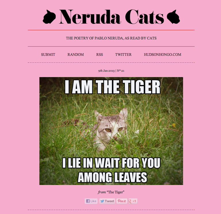 Neruda Cats