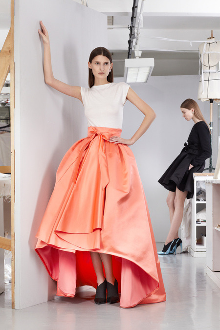 … Raf for Dior (Pre Fall 2013)