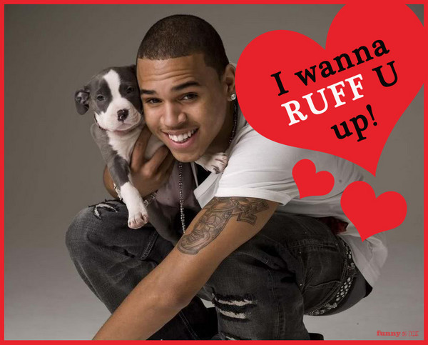 funnyordie:  9 Valentine's Day Cards Chris Brown is Giving Rihanna Chris Brown and Rihanna are reuniting just in time for Valentine's Day! Here are the romantic cards Chris made.  Awww cute puppy hot guy ♥♡♥♡