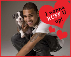 funnyordie:  10 Valentine's Day Cards Chris Brown is Giving Rihanna Chris Brown and Rihanna are reuniting just in time for Valentine's Day! Here are the romantic cards Chris made.