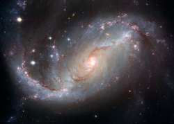 n-a-s-a:  Stellar Nursery in the arms of NGC 1672 Credit: NASA, ESA