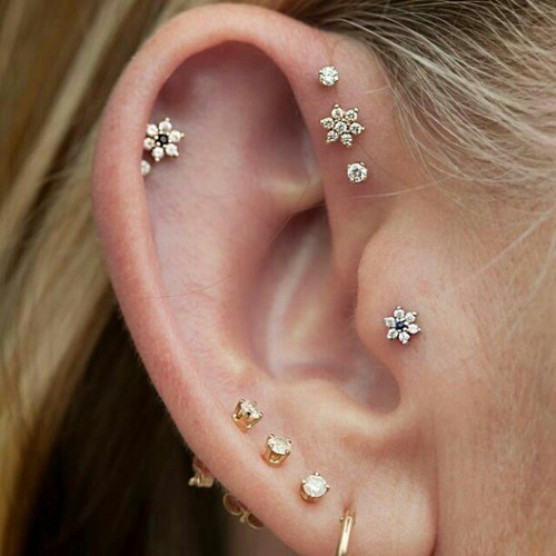 cunt-meister:  I need to get my tragus pierced this summer.