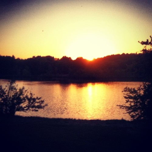 #sunset #pond #bright #yellow (at Buckmaster Pond)