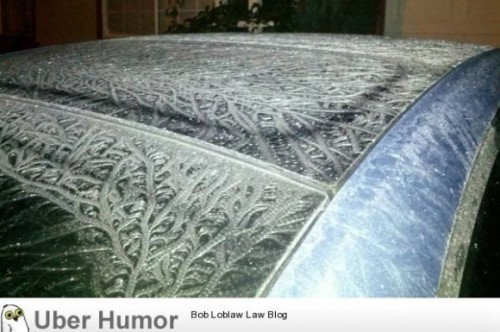meme-rage:  Rained last night. Water on car froze and made this design.http://meme-rage.tumblr.com