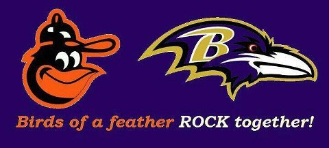 My favorite NFL team and my new baseball team. BALTIMORE!!