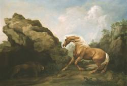 cavetocanvas:  George Stubbs, Horse Frightened by a Lion, 1763 From the Tate Gallery:  In order to create a convincing portrayal of the animals in his 'Horse and Lion' subjects, Stubbs made numerous studies of a lion in Lord Shelburne's menagerie at Hounslow Heath, while the horse had earlier been the subject of meticulous scientific observation by the artist. In these works, Stubbs wholly departs from the restrained portraiture of well-bred animals to echo the more sublime emotions of Romanticism: terror, anguish and the throes of death. The Romantic mood is enhanced by the wild landscape setting that Stubbs chose - the dramatic rock formations of Creswell Crags, on the Nottinghamshire-Derbyshire border. The looming limestone crags are made to work in conjunction with the emotionally-charged combat between the two noble beasts. In this composition, the horse's head, still free, is outlined against an open sky, while in later episodes the animals are engulfed in the dark mass of the rocks, as the horse succumbs to its fate.
