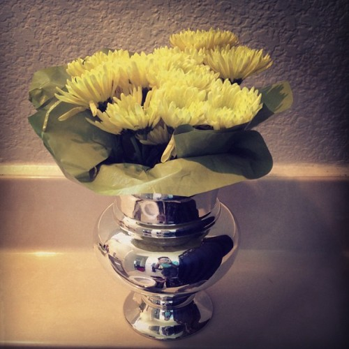 Yellow flowers x chrome vase. Feliz Miércoles! 💐🌸🌷🍀🌹🌻🌺 (at Avana Skyway)
