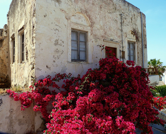 | ♕ |  Old house in Naxos, Greece  | by © Marite2007 | via ysvoice