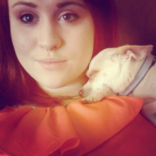 My little nugget <3 #puppy #pup #dog #chihuahua #baby  #lesbian #tattoos #ink #redhair
