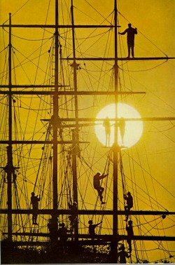 vintagenatgeographic:  Silhouettes on a boat's rigging at Mystic Seaport, Connecticut National Geographic | August 1968