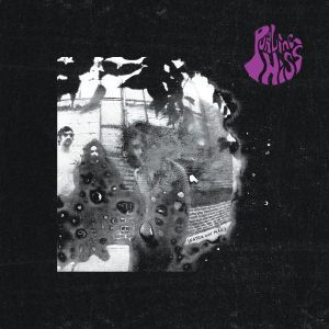 SS: If you haven't heard yet, Philadelphia's own PURLING HISS just dropped a brand new album called Water on Mars from Drag City. It's the start of what sounds like a new era of Purling Hiss recordings, but they still somehow kept their past intact, listen now » http://styrofoamdrone.com/2013/03/28/purling-hiss-water-on-mars/
