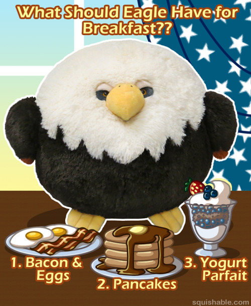 squishynews:  Tough choices for this Bald Eagle!  Mother of God these plushies are adorable If I had money I'd hire these people to design an official Fat Birds mascot haha