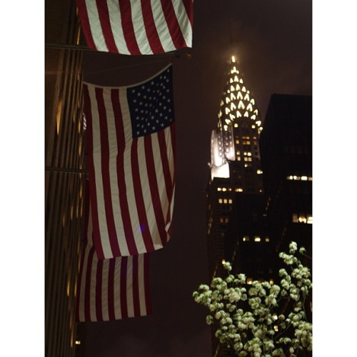 Chrysler Building  For The Land Of The Free And The Home Of The Brave  #USA #Chrysler #NYC #CalleryPearsTrees #NewYork #Spring #NewYorkCity  (at Bryant Park)
