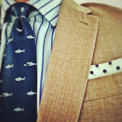 thetalesofagentleman:  shark tie & polka dot handkerchief!