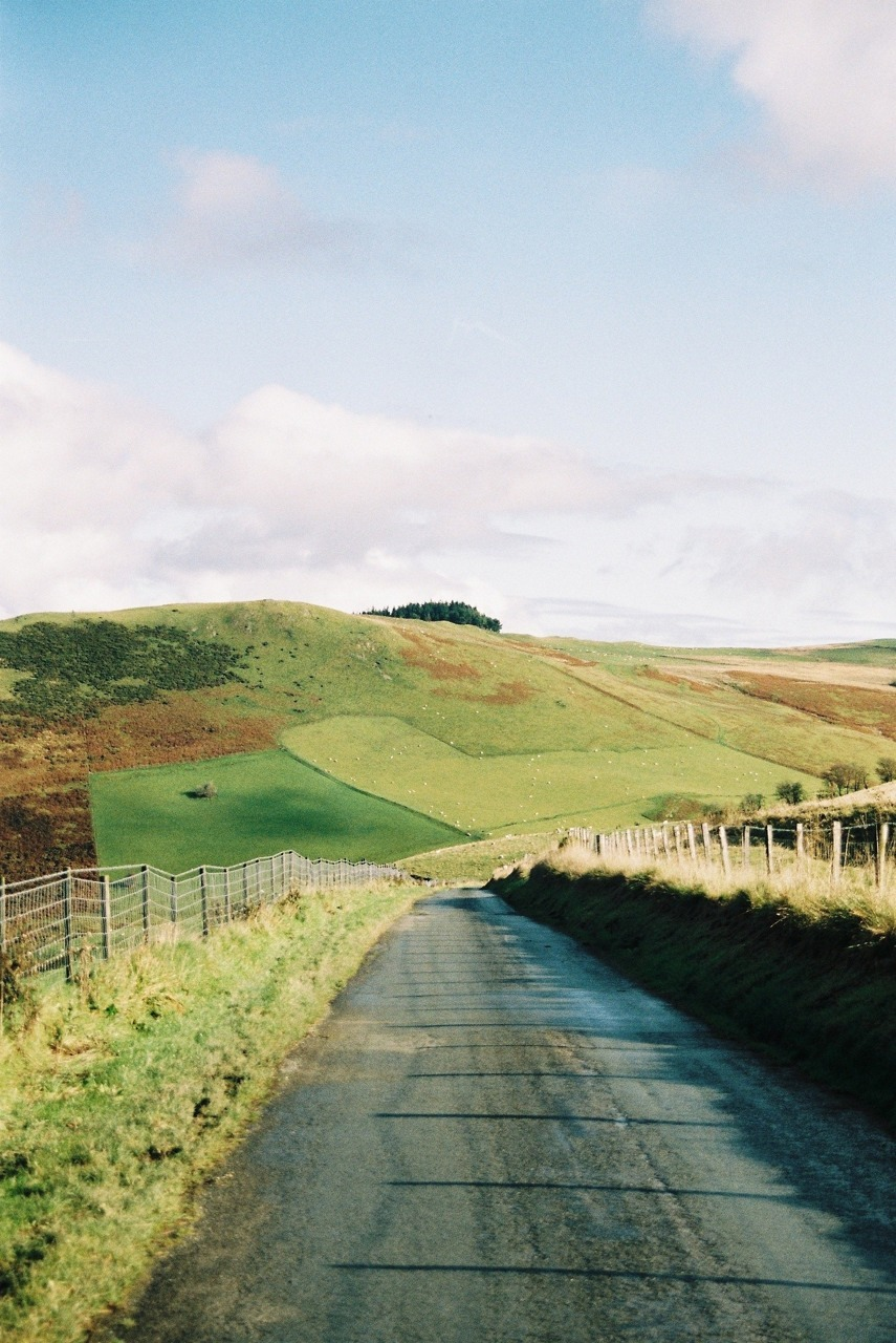 south-england:  Country lanes »» Thomas Hanks