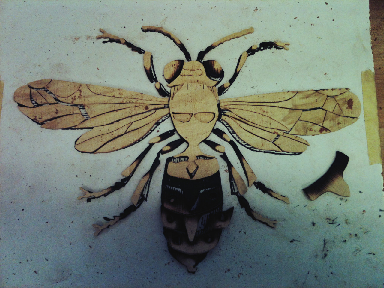 SIERRA WOODCRAFT - wasp Check this guy out! This may be my favorite marquetry design we've done yet. I made four of these guys, and the colors will be all mixed and matched on the final product. The one in this photo is reclaimed maple from the Sierra foothills of California.