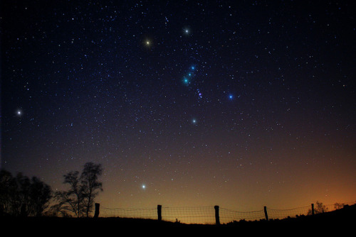 spacettf:  Orion by Peter Muks Photography on Flickr.