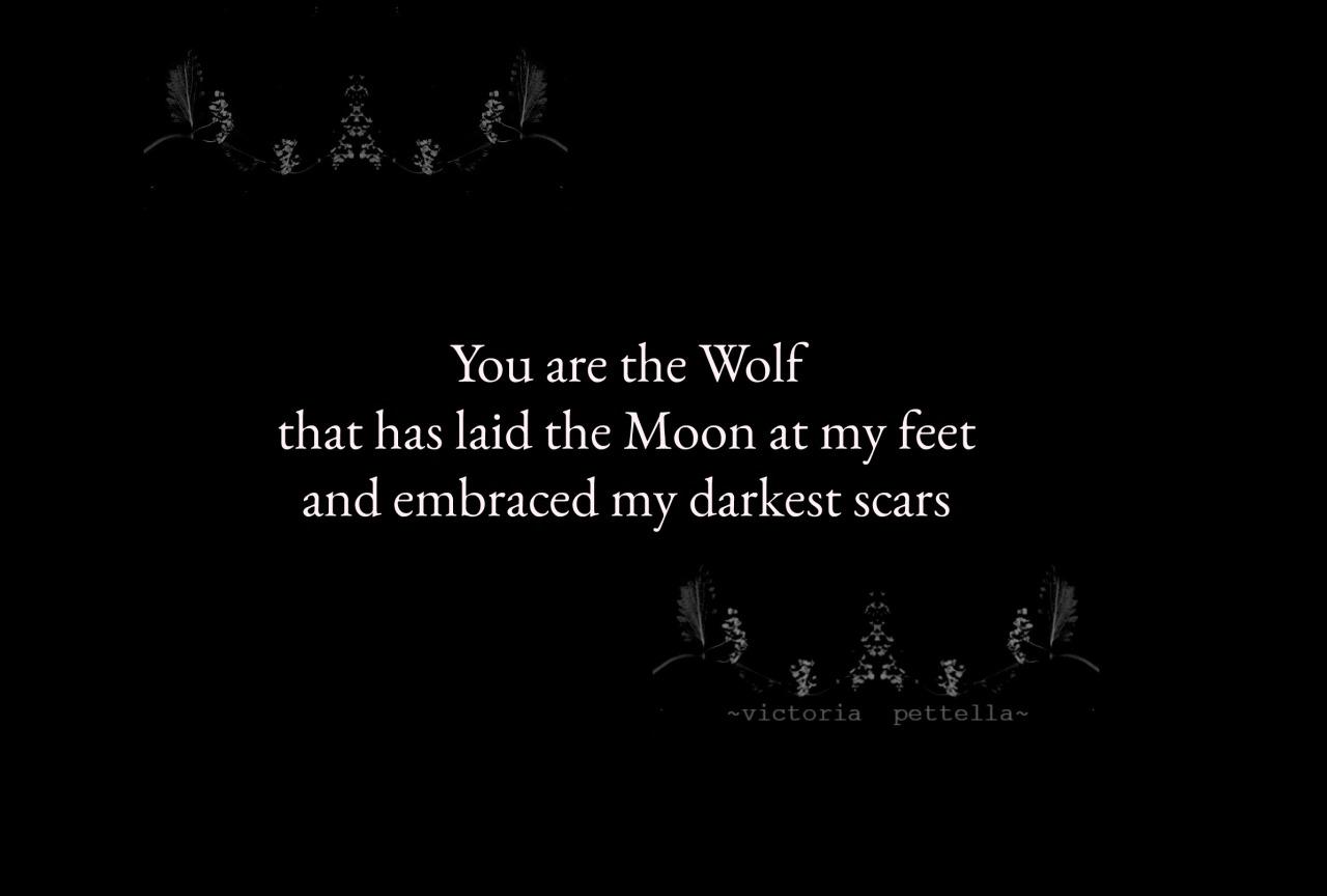 my darkest scars~victoria pettella #victoria pettella#beautiful creatures#wolves#scars