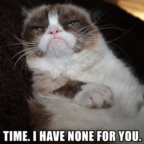 My favorite. Grumpy cat!