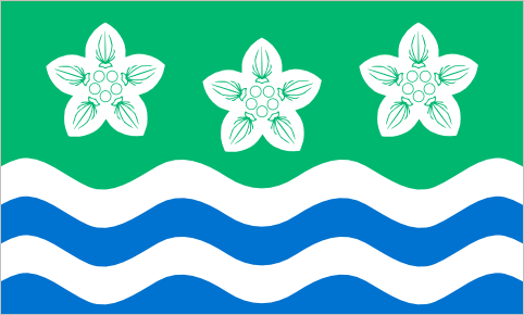 Cumberland, since 2012 The flag of the historic English county of Cumberland was officially registered with the UK Flag Registry in December of last year. The flag is based on the county's traditional banner of arms and was redrawn by vexillographer Philip Tibbetts. It features the county's official floral emblem, the Parnassus flower. The same flowers can be found on the flag of Cumbria.
