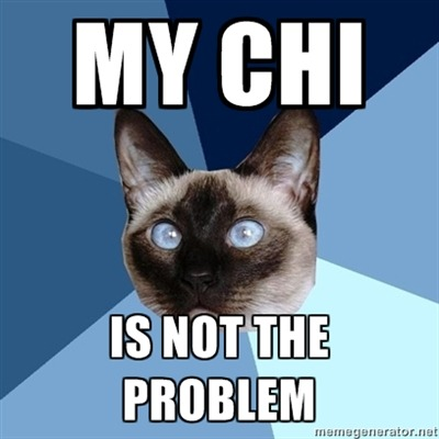 "[Image: 6-piece blue colored background with a Siamese cat.Text reads: ""My chi is not the problem.""]"