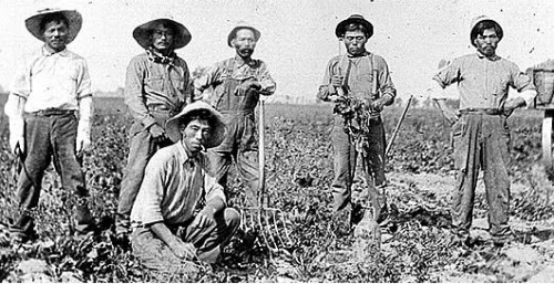 blackinasia:  todayinlaborhistory:  Today in labor history, February 11, 1903:  Japanese and Mexican laborers unite to form the Japanese-Mexican Labor Association to fight the labor contractor responsible for hiring at the American Beet Sugar Company in Oxnard, California.  They refused to work until their grievances were addressed and by the first week in March, over 90% of the county's beet industry labor force had joined the JMLA, bringing the sugar industry to a standstill.  The laborers ultimately won most of their demands.  Solidarity.