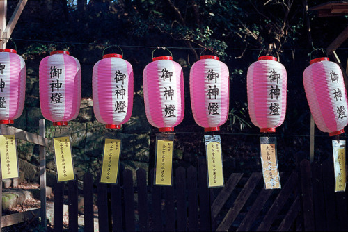 pink lanterns 1 by yamatime on Flickr.