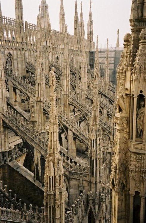 alielikeus:  Milan cathedral, IT
