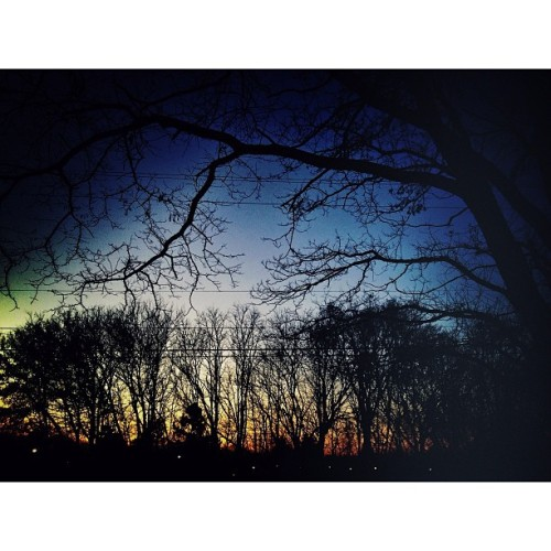 Twilight #iphone #snapseed #trees #sky #sunset