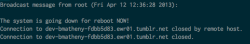 This is why writing and testing code should always be done on a dev box. The dreaded accidental reboot.