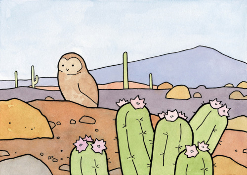 Burrowing Owl and Cactus5x7 Print