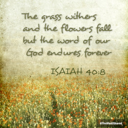 thewordshared:  The grass withers and the flowers fall but the Word of our God endures forever (Isaiah 40:8)