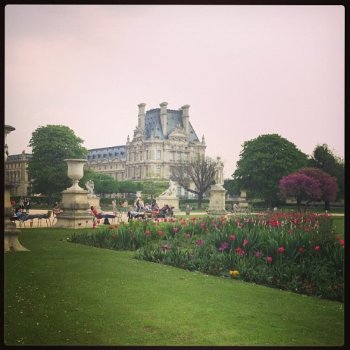 Pretty as a picture. #finallyspring #flowers #louvre #gardens #paris (at Jardin des Tuileries)
