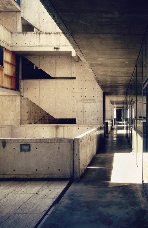 hollyemmeline:  Salk Institute