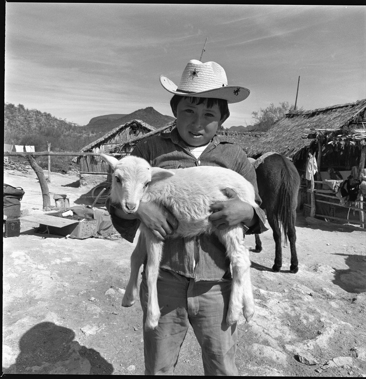 Young boy carrying goat at Rancho Represito, March, 1967, Harry Crosby Collection, MSS 333