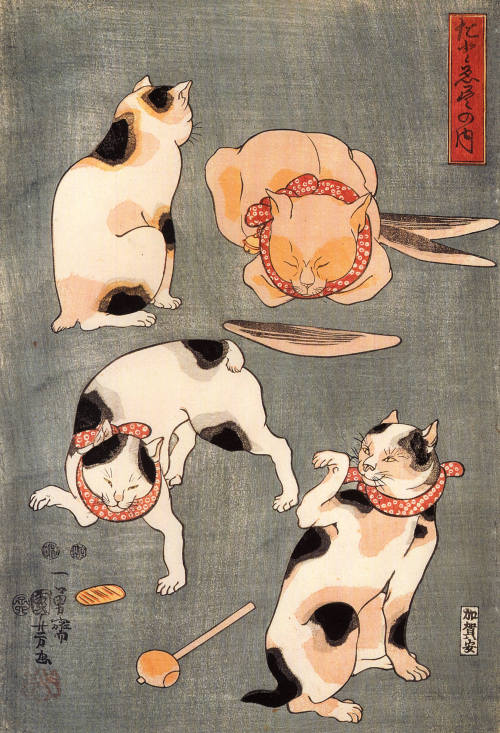 cavetocanvas:  Utagawa Kuniyoshi, Four Cats in Different Poses, n.d.
