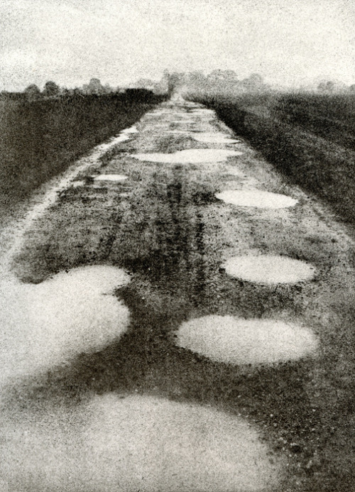 David C Williams' Puddles (by David C Williams)
