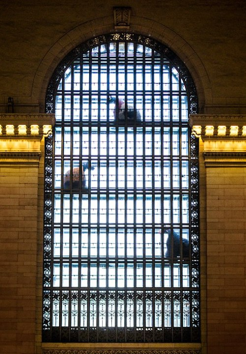 Nick Cave's Colorful Horses Invade Grand Central Terminal Today