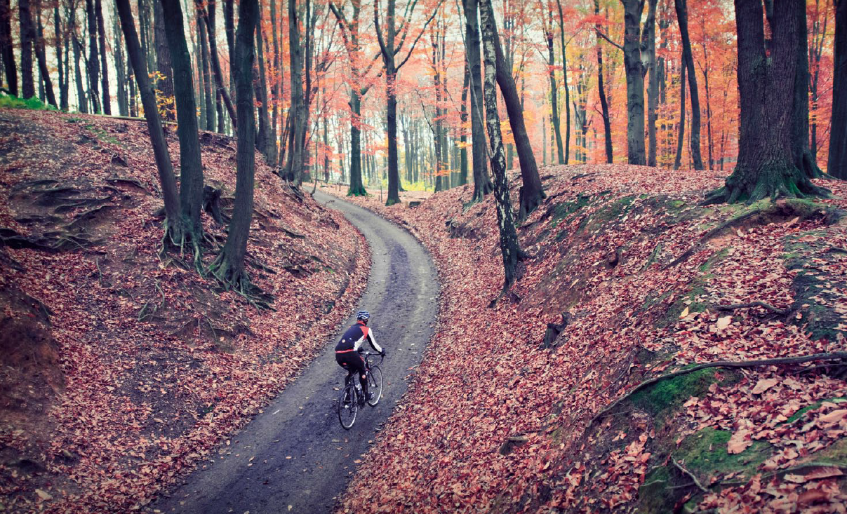What a gorgeous piece of road to ride through. I love that time of the year as for me the business of the year has subsided a little before the Christmas madness. The rider in the Photo is using the new Poggio Jacket, designed for the temperature range of8°-17° C / 45°-62° F which makes it perfect for Autumn/Fall. I can't wait to try this jacket as I reckon it's going to be great solution for my favourite time of the year to ride.